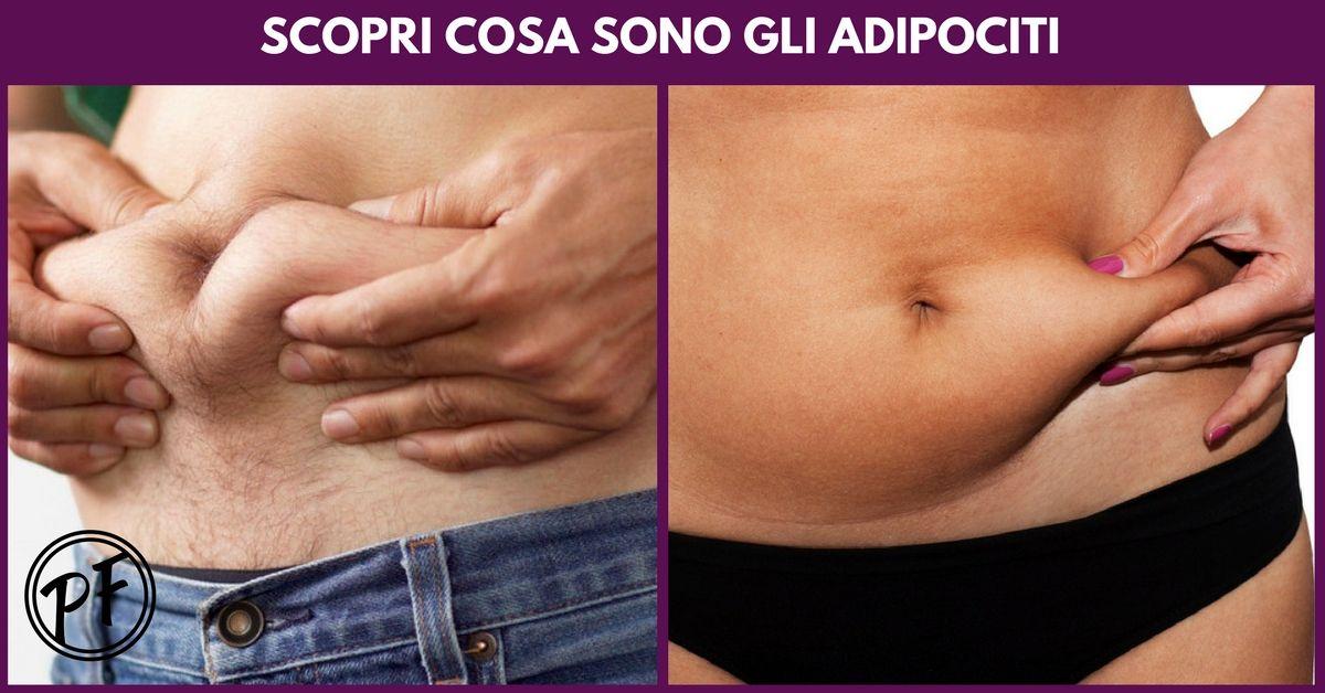 Perdere Peso: che cosa sono gli adipociti?